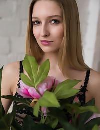 Presenting Alisa Bonet featuring Alisa Bonet by Vladimiroff