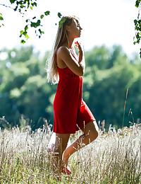 Nociora featuring Stella Lane by Domenic Mayer